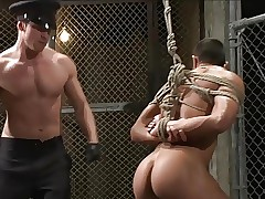 BDSM - Office-holder dominates someone's skin inmate.