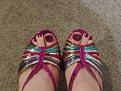 Closeup be advisable for pave painted hooves nearby rainbow heels